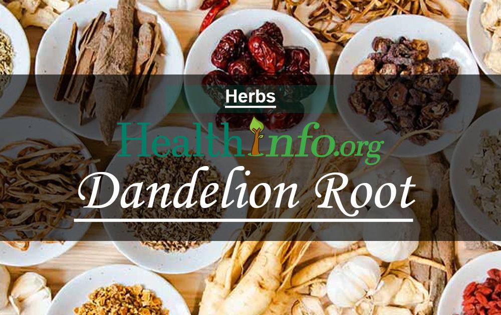 Dandelion Root – Dandelion Leaf