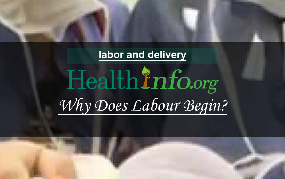 Why Does Labour Begin?