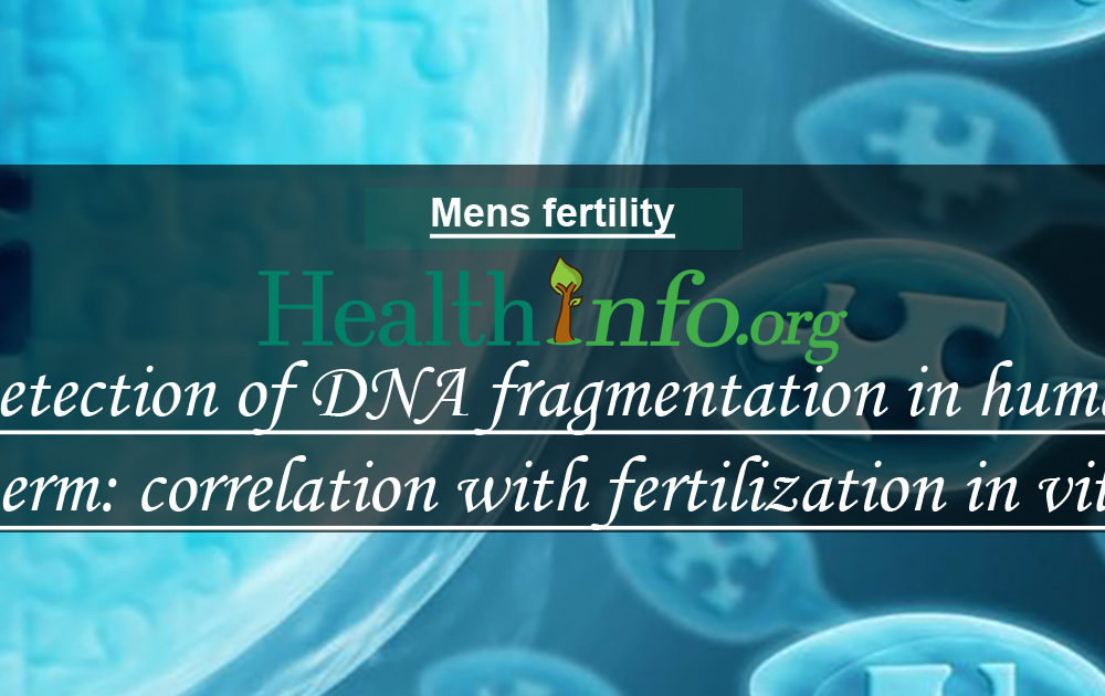 Detection of DNA fragmentation in human sperm: correlation with fertilization in vitro