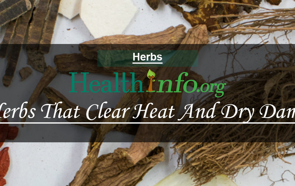 Herbs That Clear Heat And Dry Damp