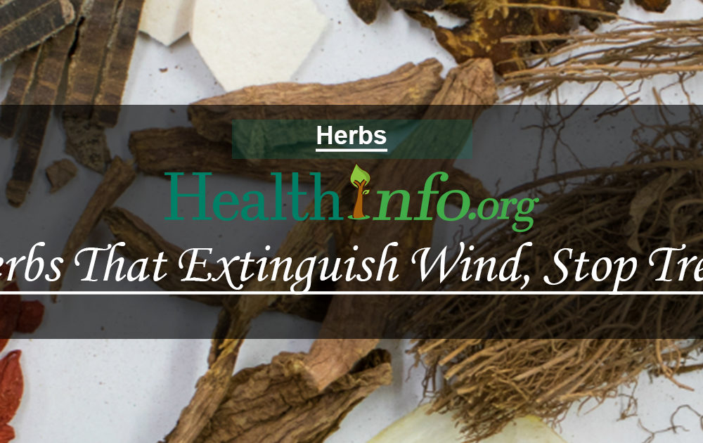 Herbs That Extinguish Wind, Stop Tremors And Calm The Spirit