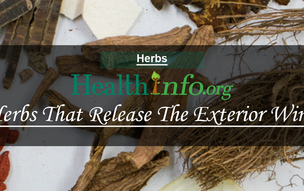 Herbs That Release The Exterior Wind Heat